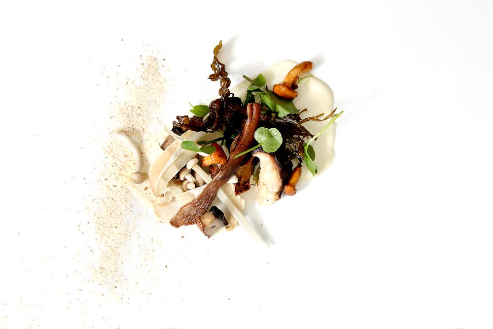 Mushrooms, seaweed, horseradish