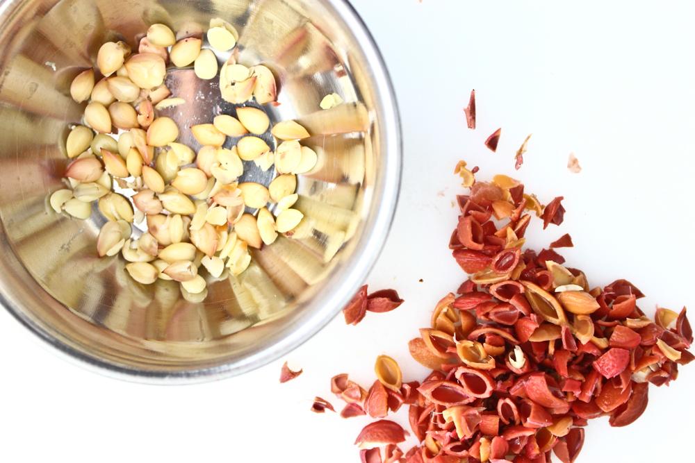 Plum kernels