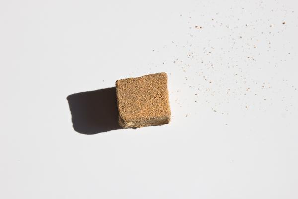 Alderwood chocolate truffle, sourdough bread powder