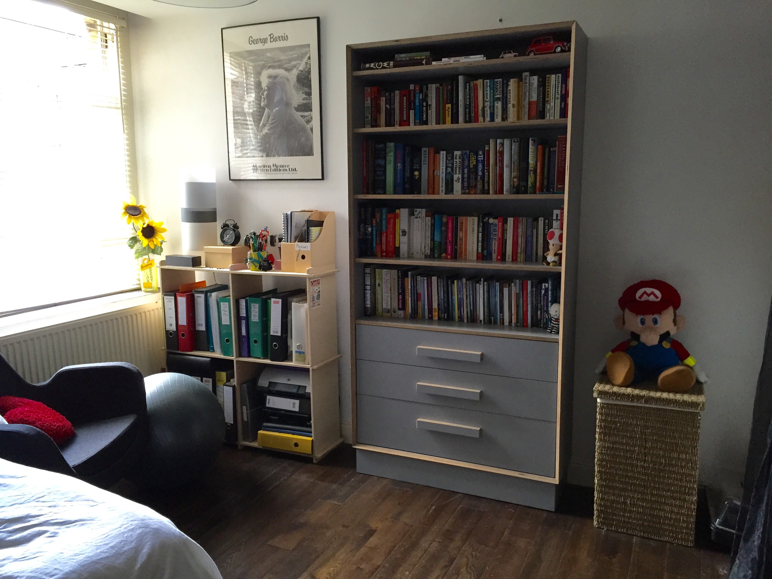 Birch ply bookcase