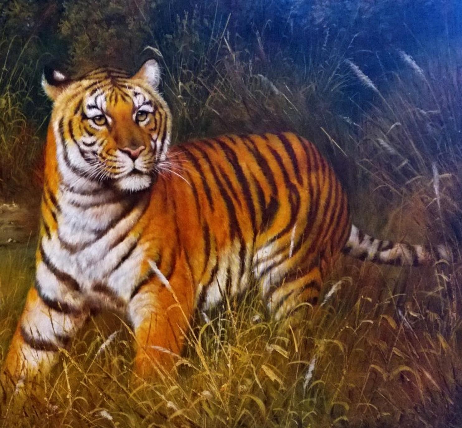 Bengal Tiger_2.jpg