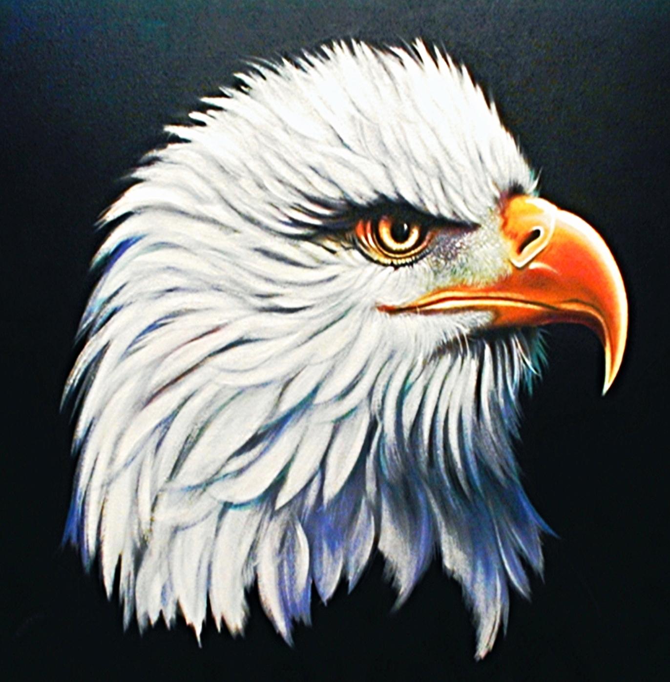 Eagle_license.jpg