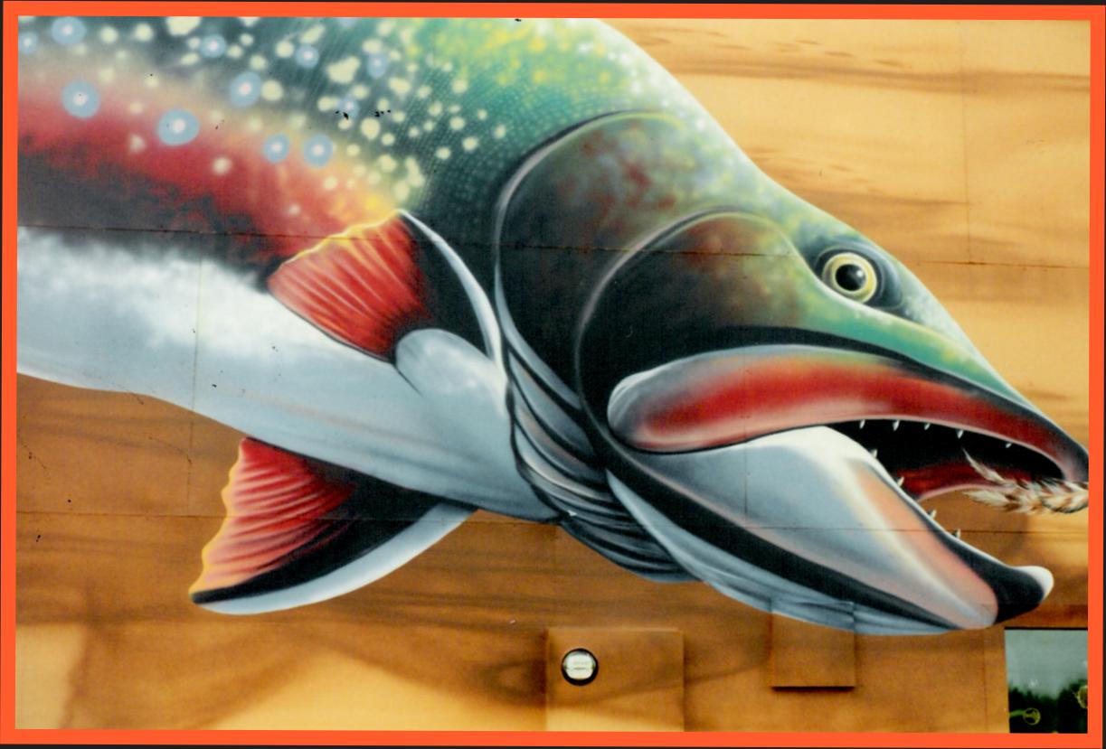 fishmural_2.png