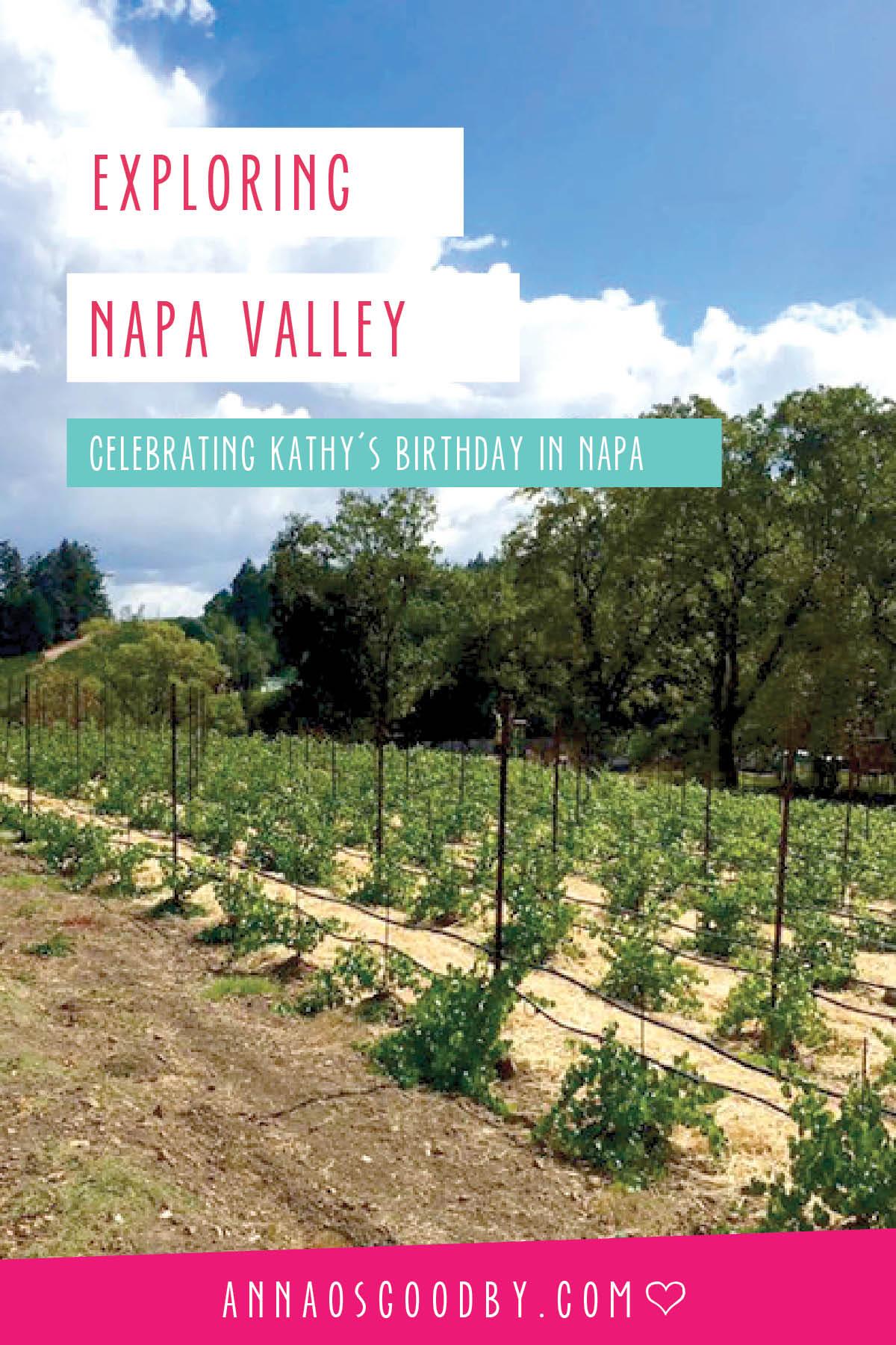 Anna Osgoodby Life + Design :: Exploring Napa Valley