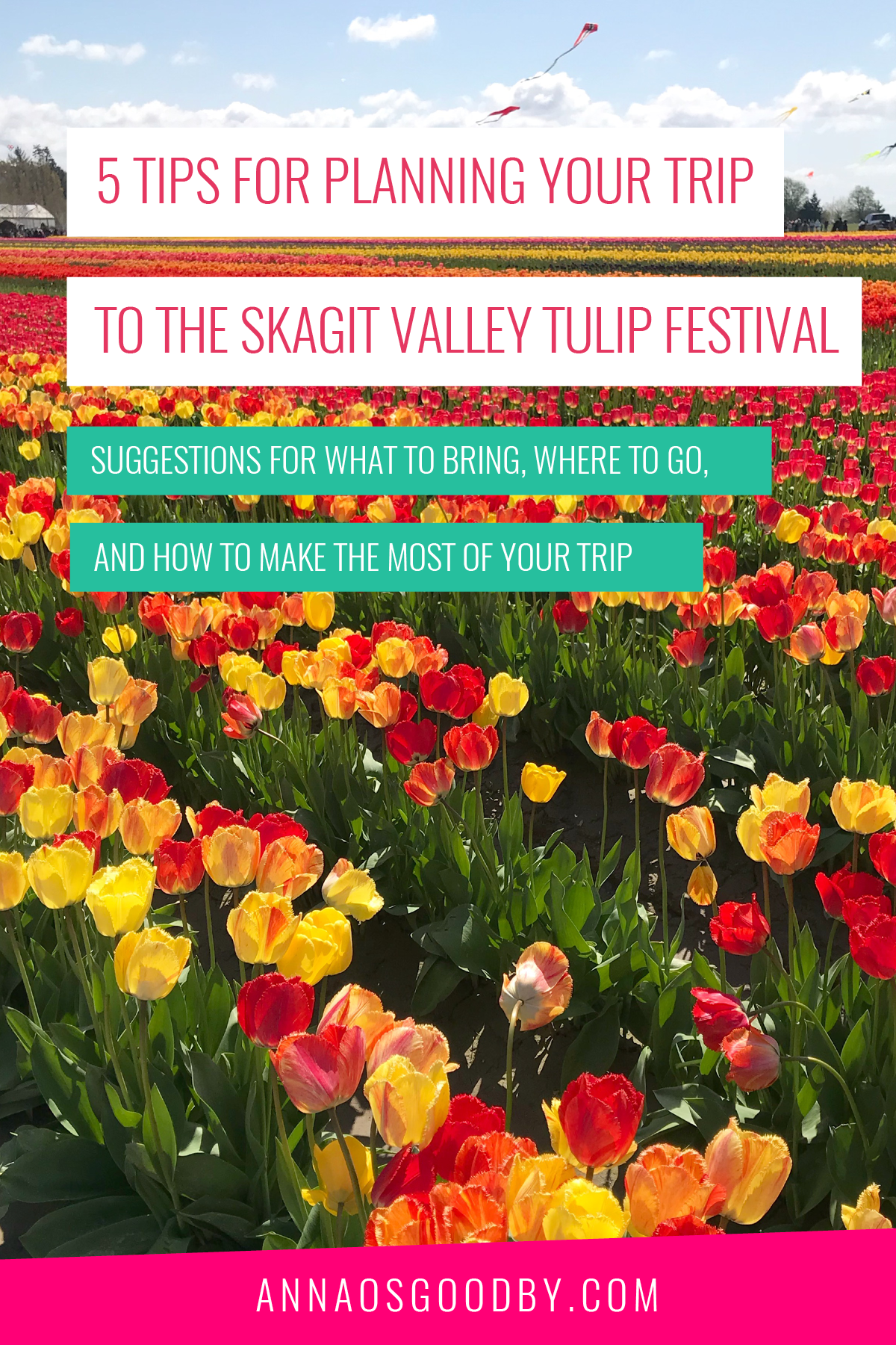 Anna Osgoodby Life + Biz :: 5 Tips for Planning your trip to the Skagit Valley Tulip Festival.png