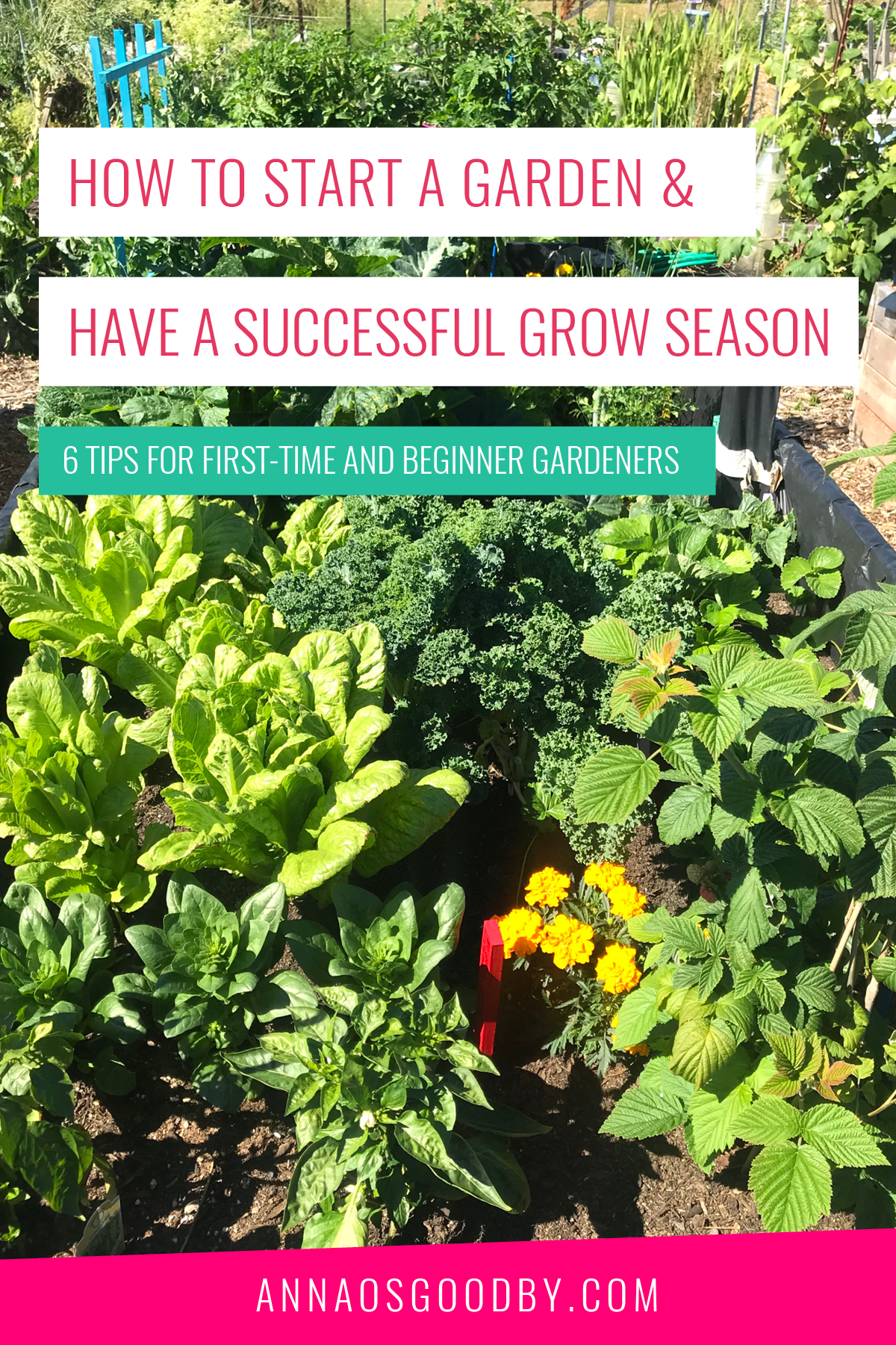 Anna Osgoodby Life + Biz :: How to Start a Garden and Have a Successful Grow Season :: 6 Tips for First-Time and Beginner Gardeners