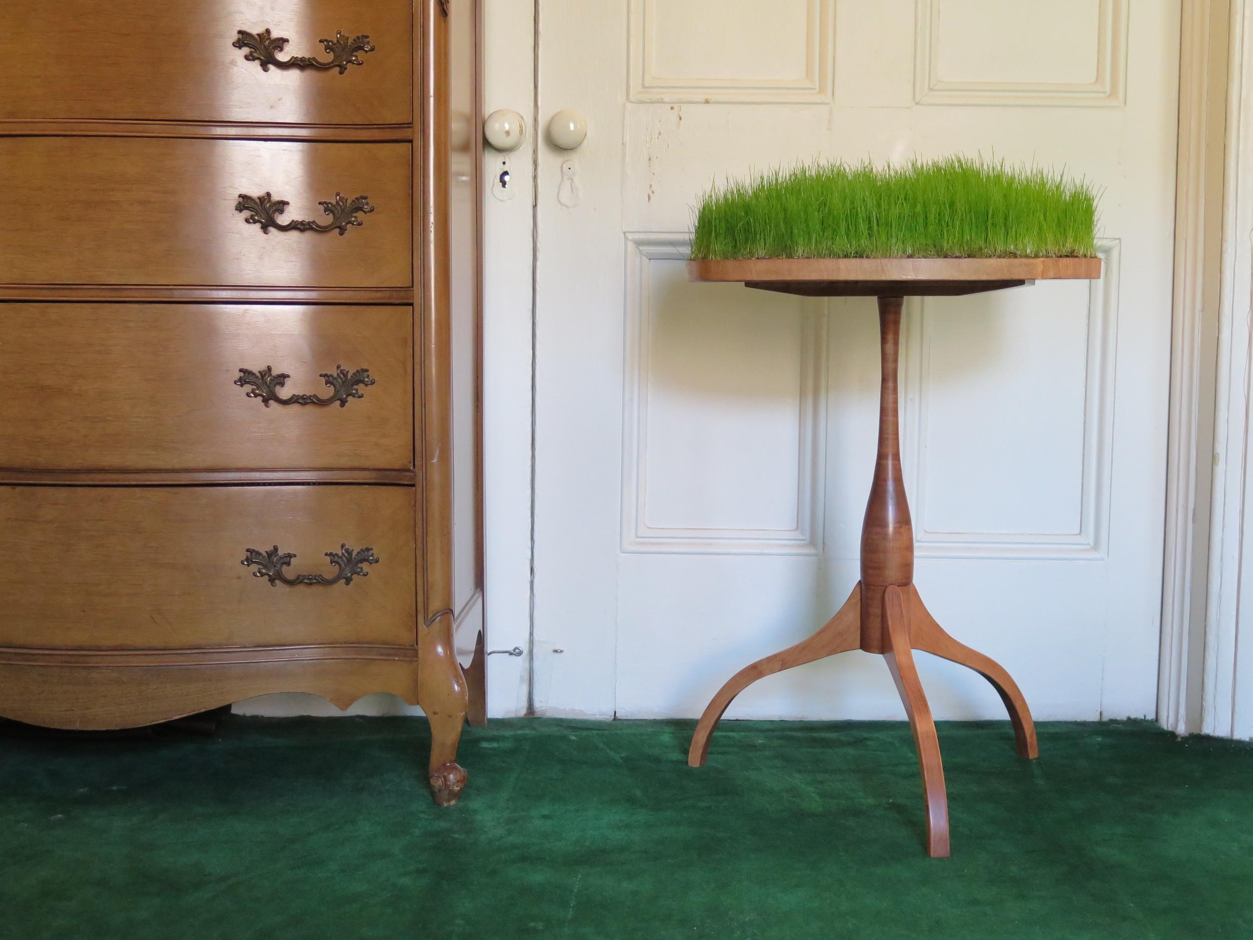 The Grass is Always Greener   by Yasunari Izaki