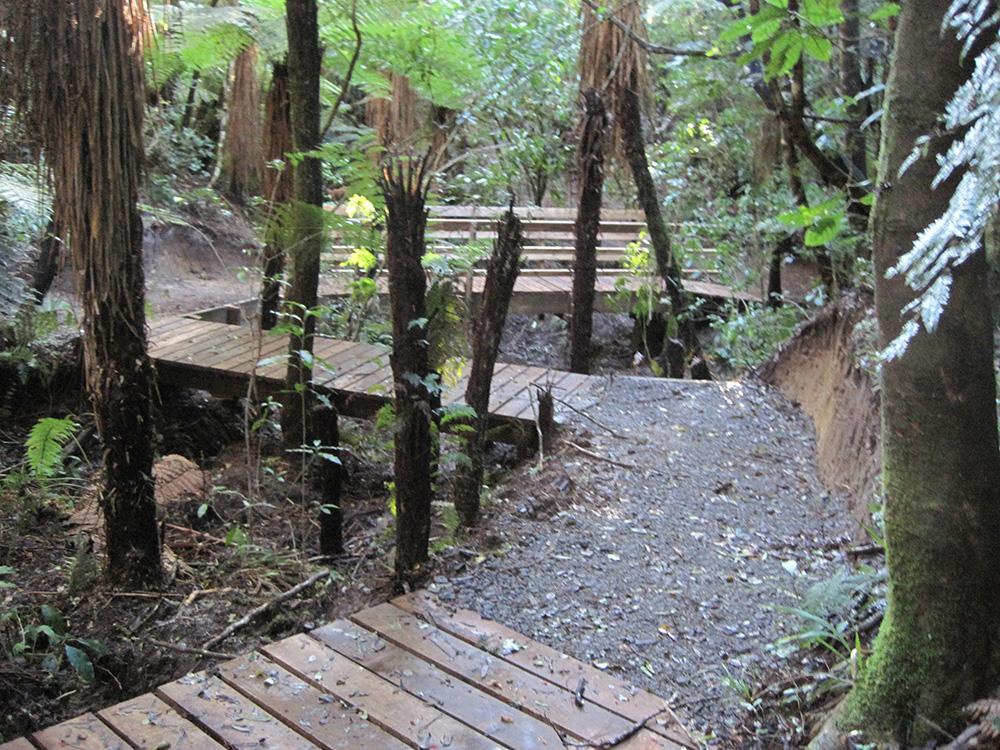 TBC Trail, TECT All Terrain Park , NZ