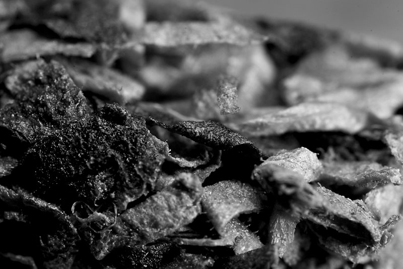 The deadly undulations of tobacco