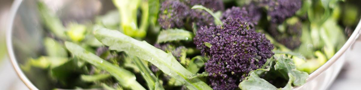 Broccoli header.jpeg
