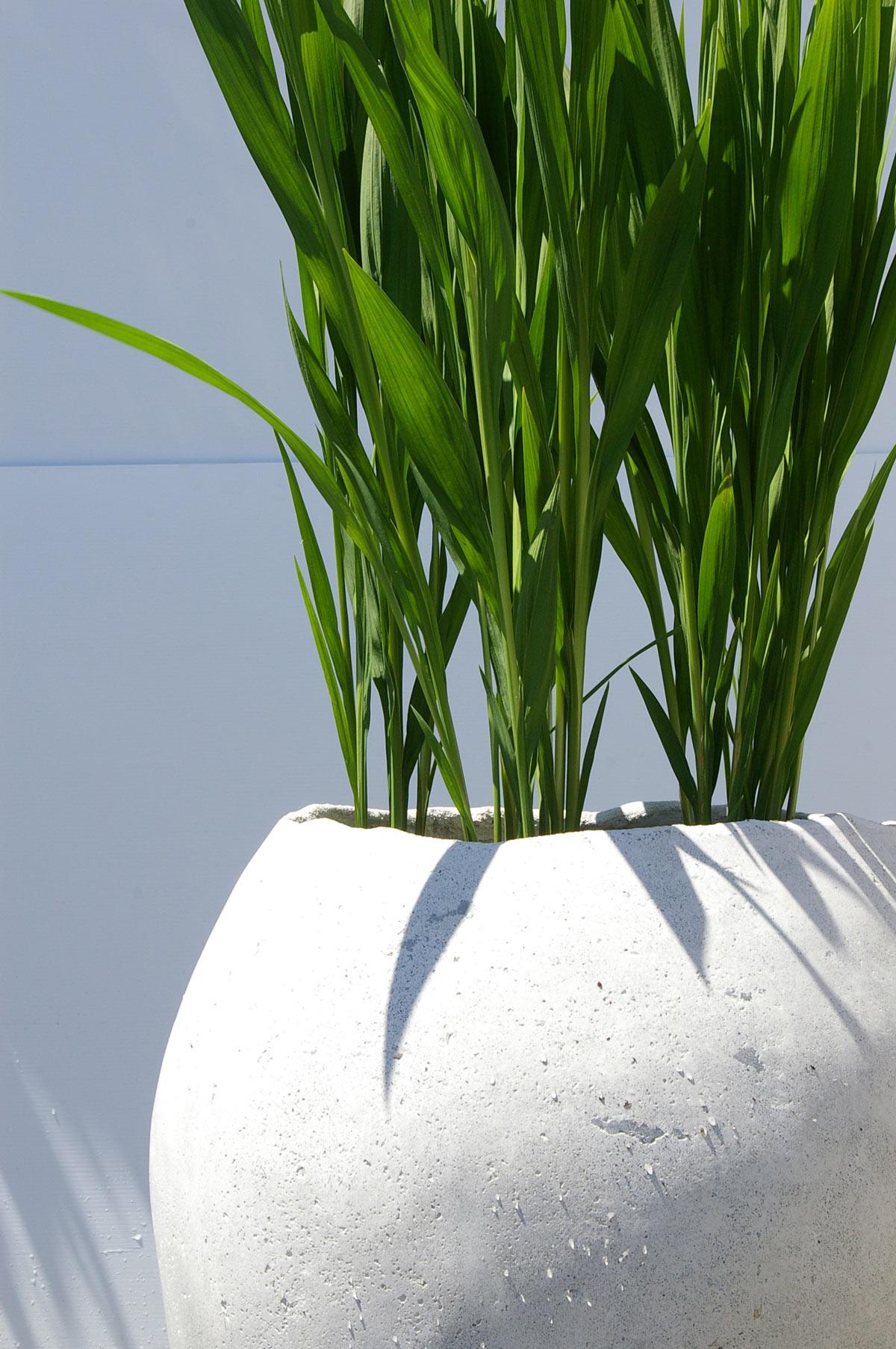 hand_cast_planter_greens.jpg