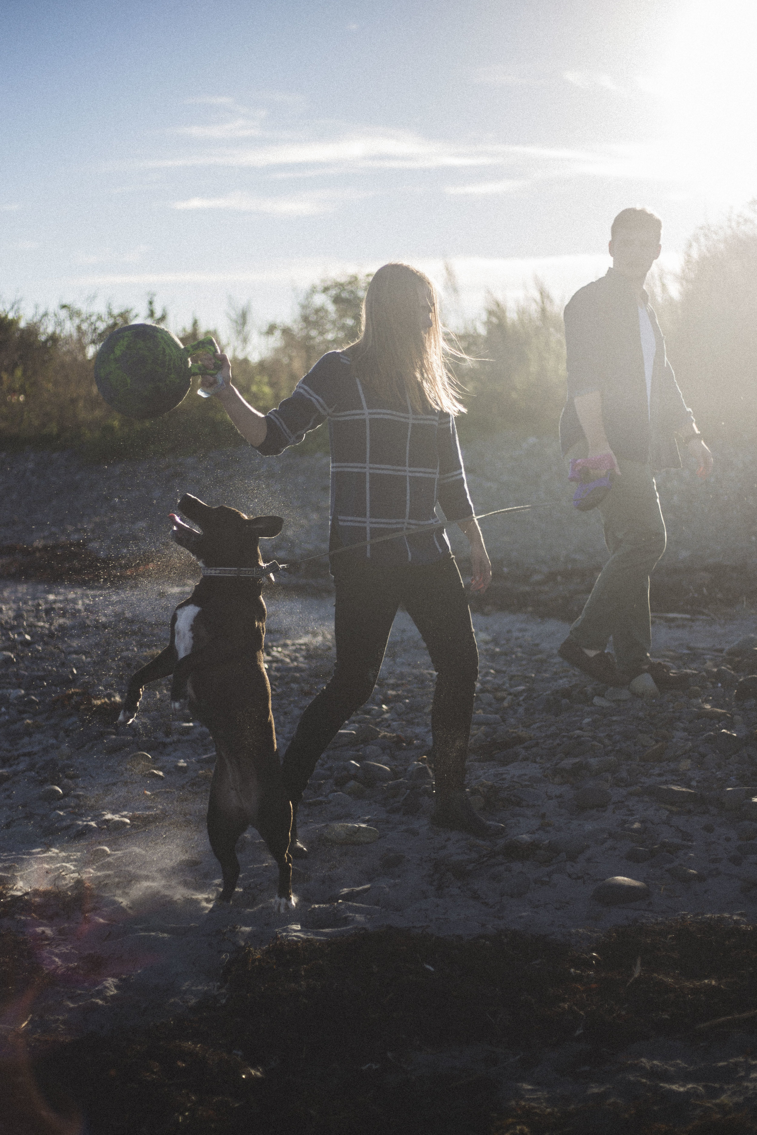 A couple's photo shoot with their dog in Kittery, Maine