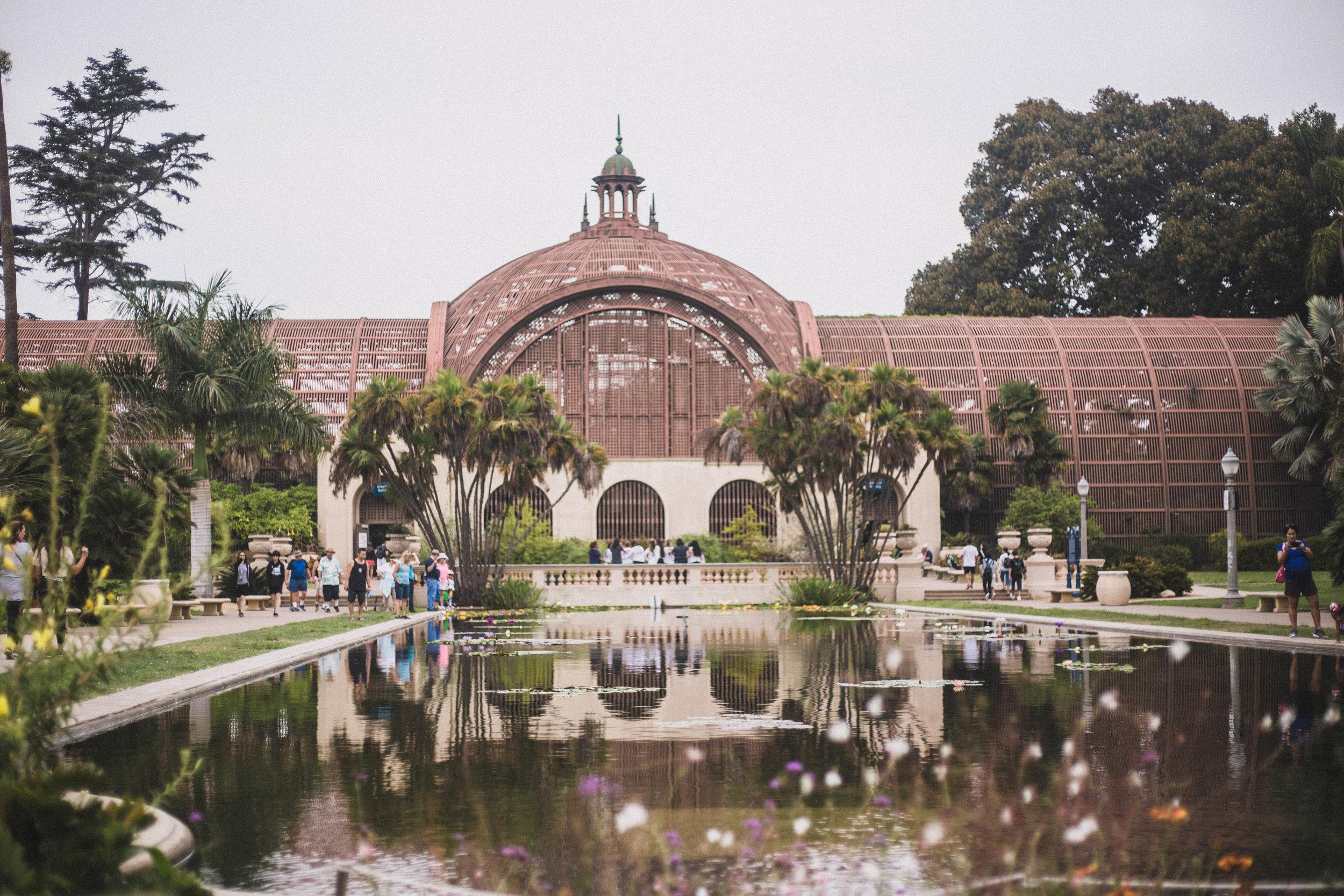 Botanic Garden in Balboa Park (San Diego City Guide)