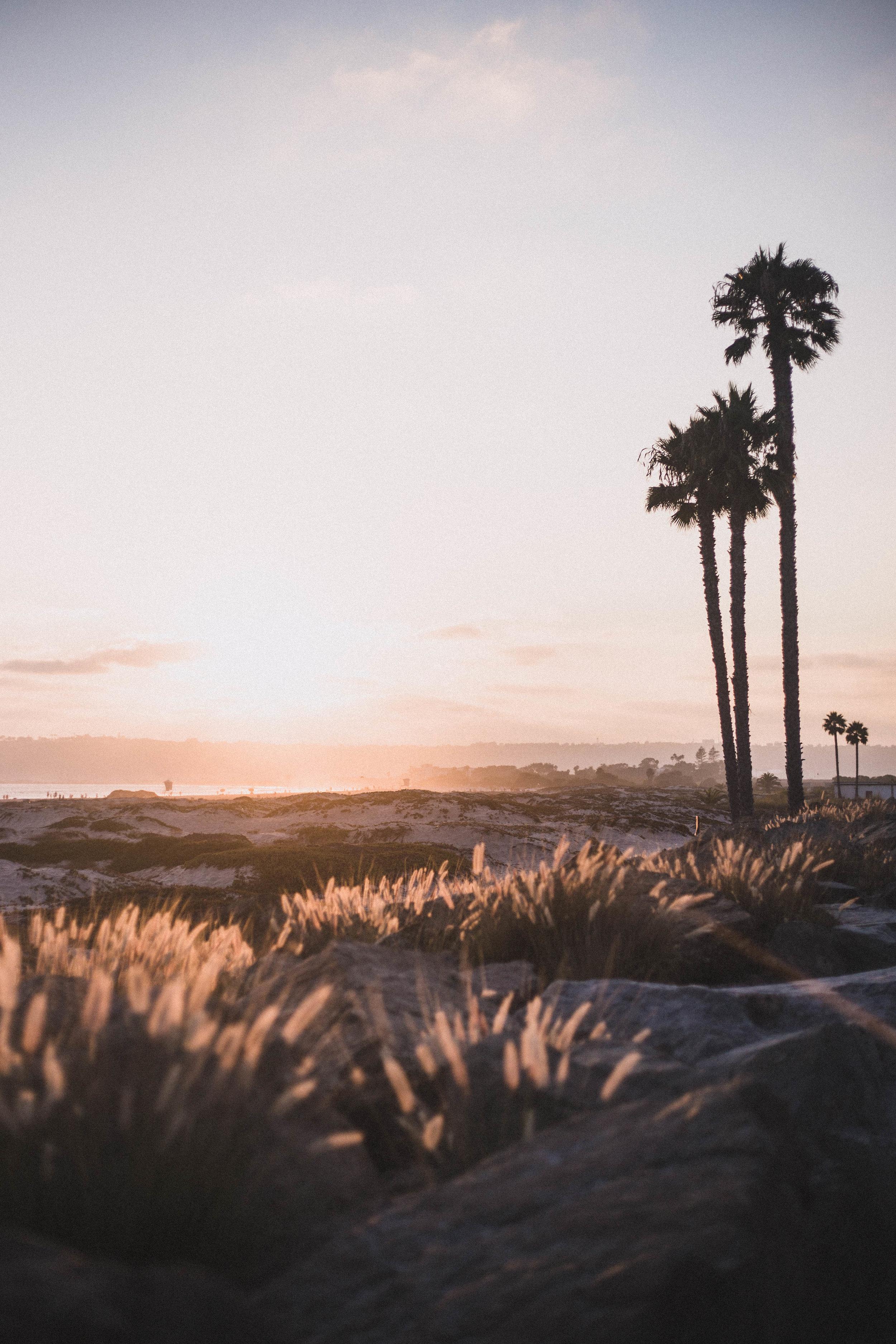 Sunset at Coronado Beach (San Diego City Guide)