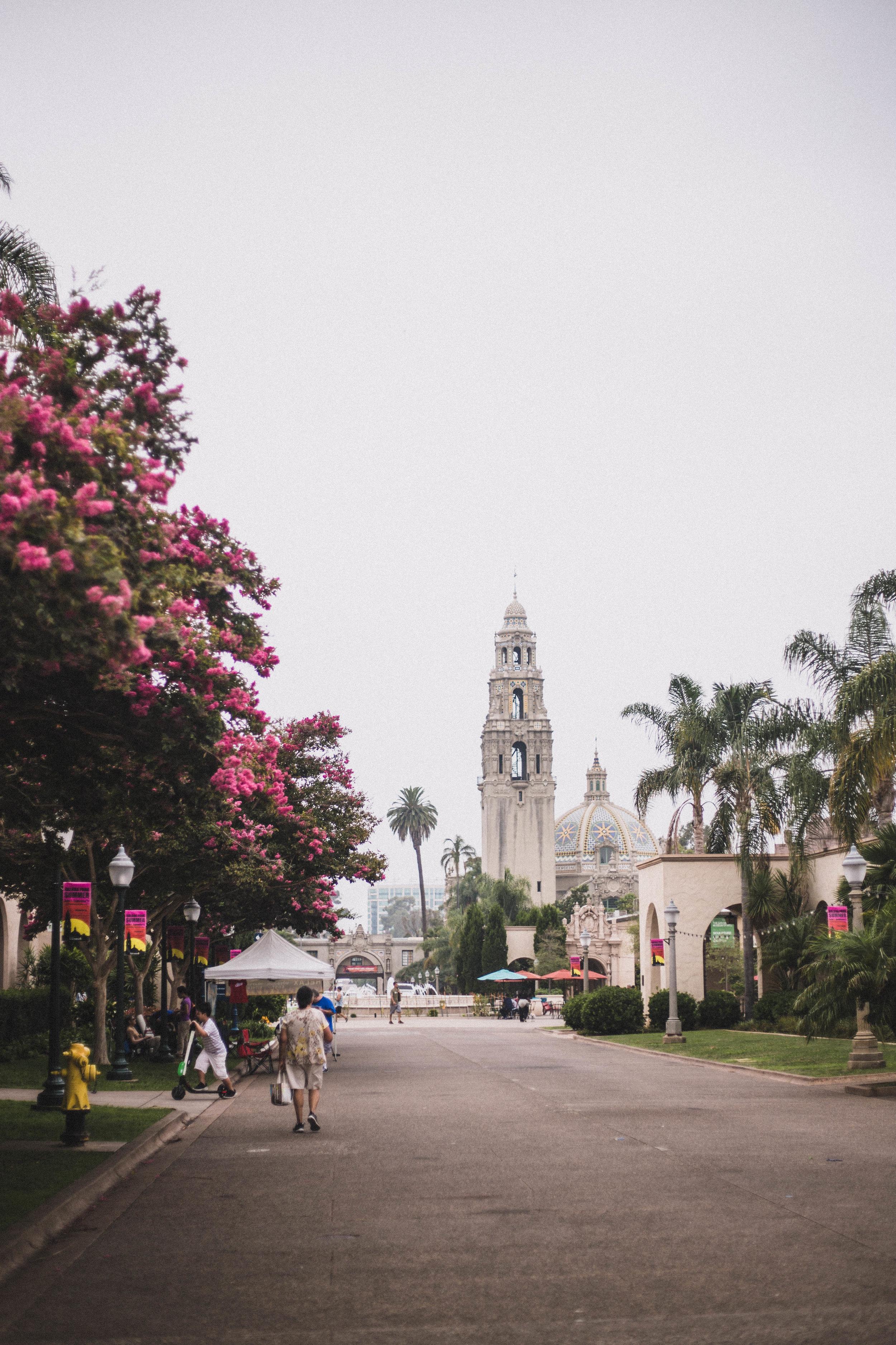 Balboa Park (San Diego City Guide)