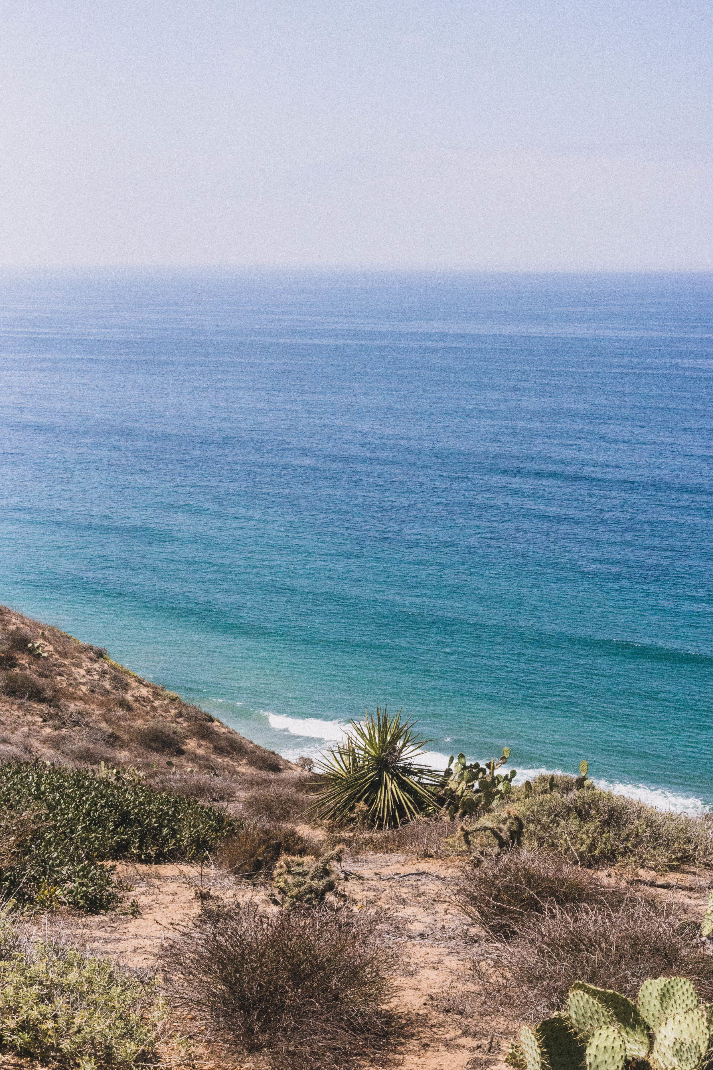 Views from Torrey Pines (San Diego City Guide)