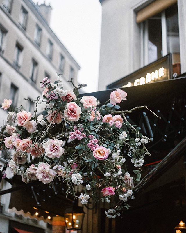 'Id love to have the whole place swimming in roses' 🌸 Sending out my monthly hello ~soon~ where I'll share my Paris guide and a few other fun things that have been keeping me busy. Head to my website (in bio) to subscribe 🤗