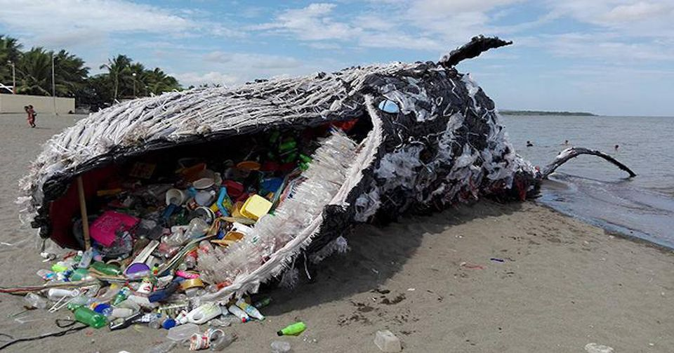 A Greenpeace Philippines representation of a dead whale from ingestion of plastic is quickly becoming reality .