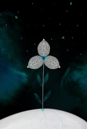 Seeding the Stars, 2015