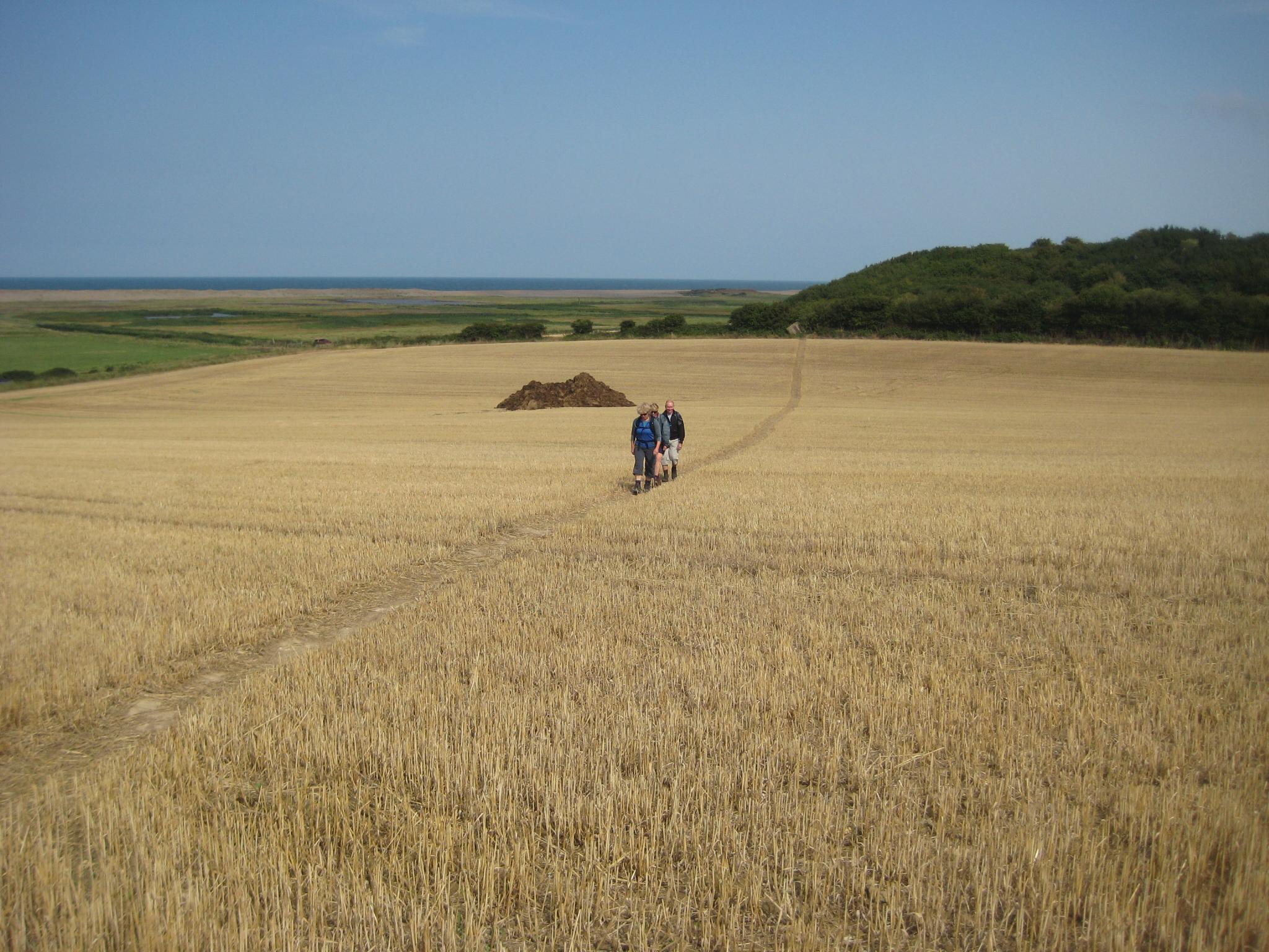 Walking along the Suffolk Coast AONB