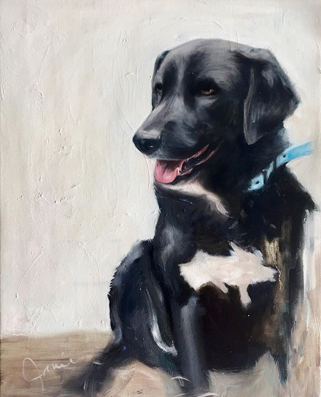 Delivered this commission Monday! Sweet Ozzie for the kindest people @christoplynn and Carly! #dogart #nashvilleart #oilpainting