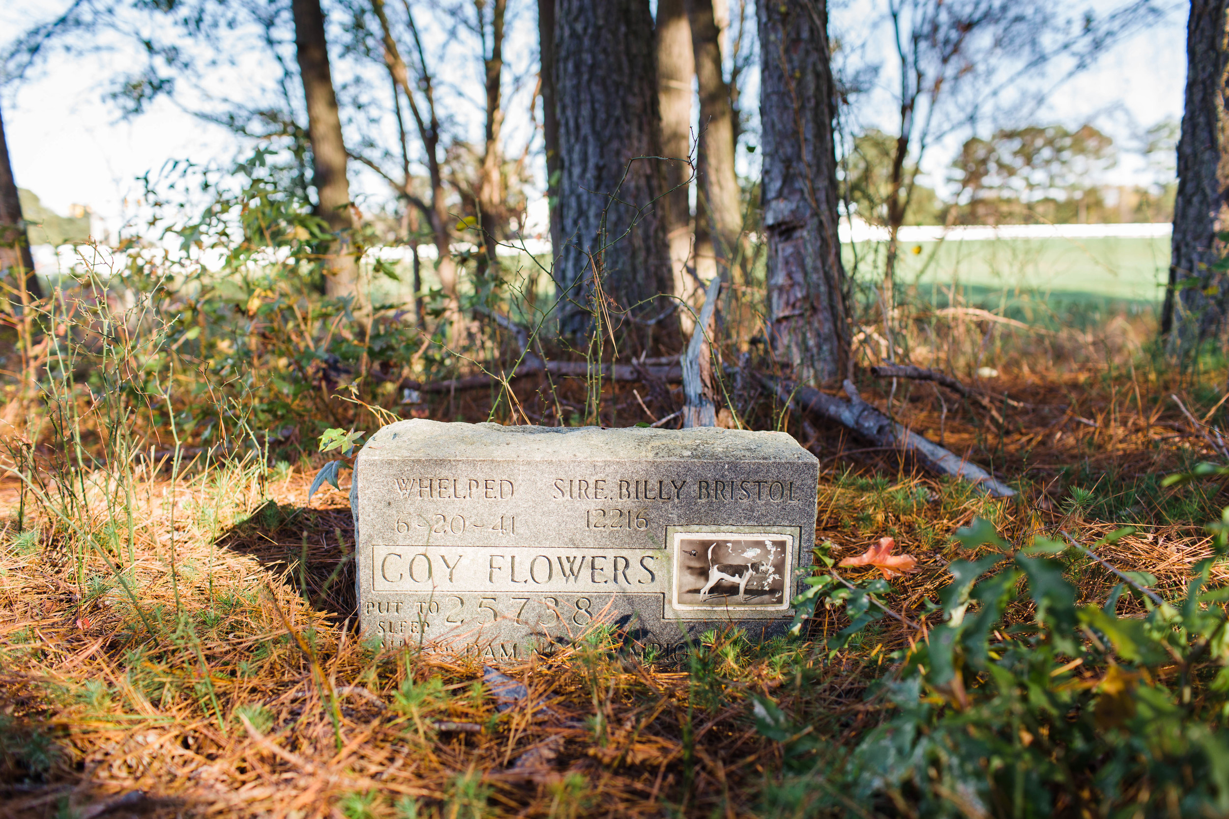 Coy Flowers is buried near the rest of the Flowers Family