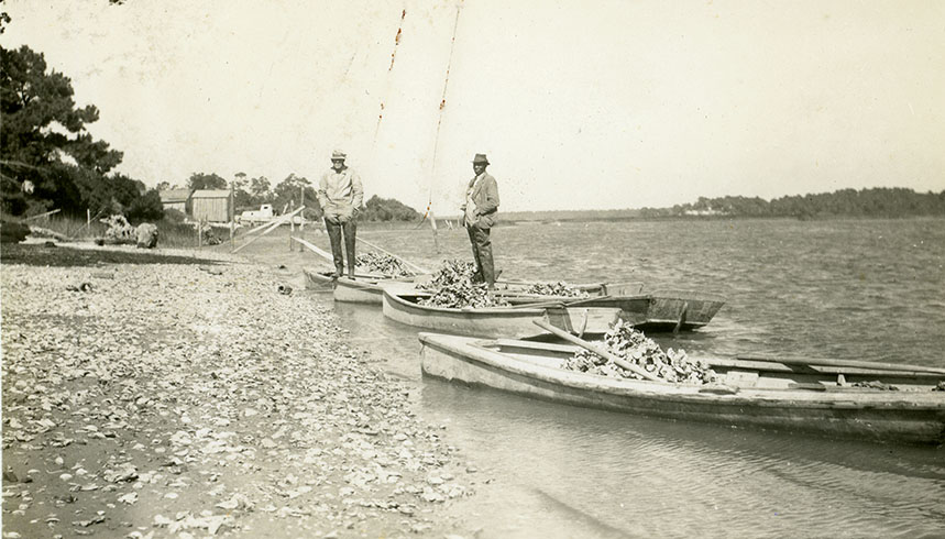 Brunswick County oyster harvesters Courtesy of the State Archives of North Carolina