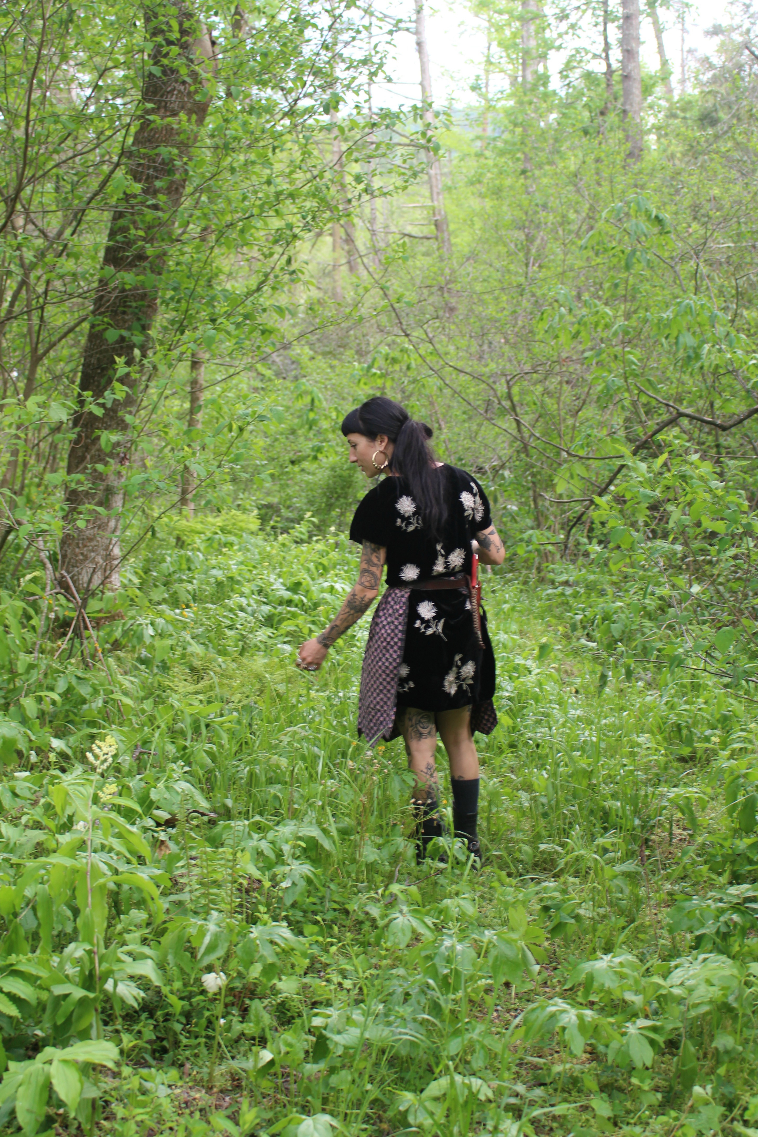Ash Sierra wanders her PROPERty in search of medicinal plants