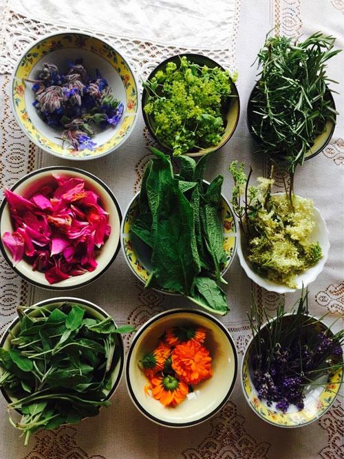herb-abundance.-Reminder-WEB.jpg