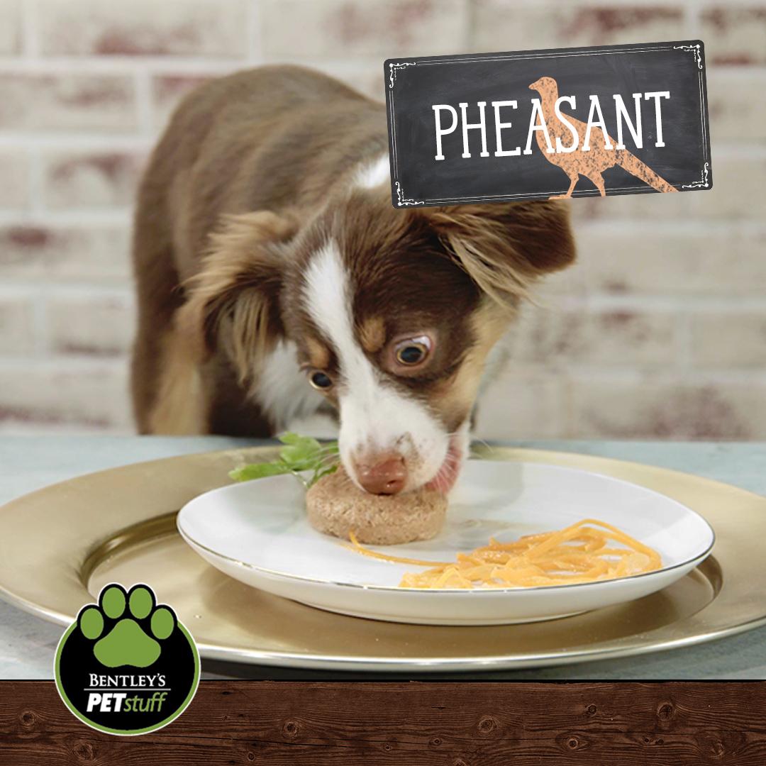 Pheasant-overlay.jpg