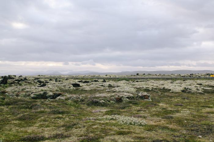 LAVA ROCKS ICELAND