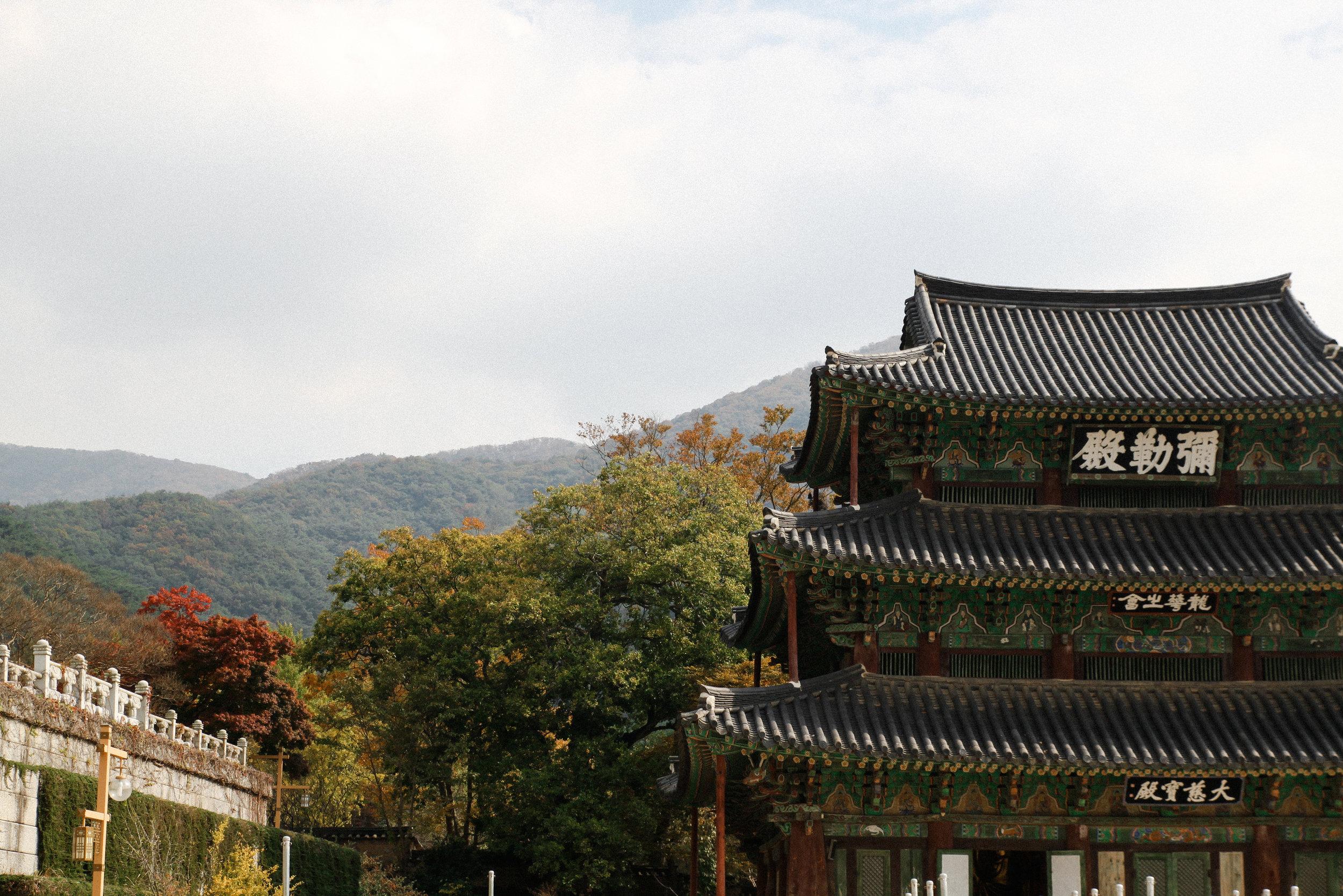 SOUTH KOREA KINDNESS