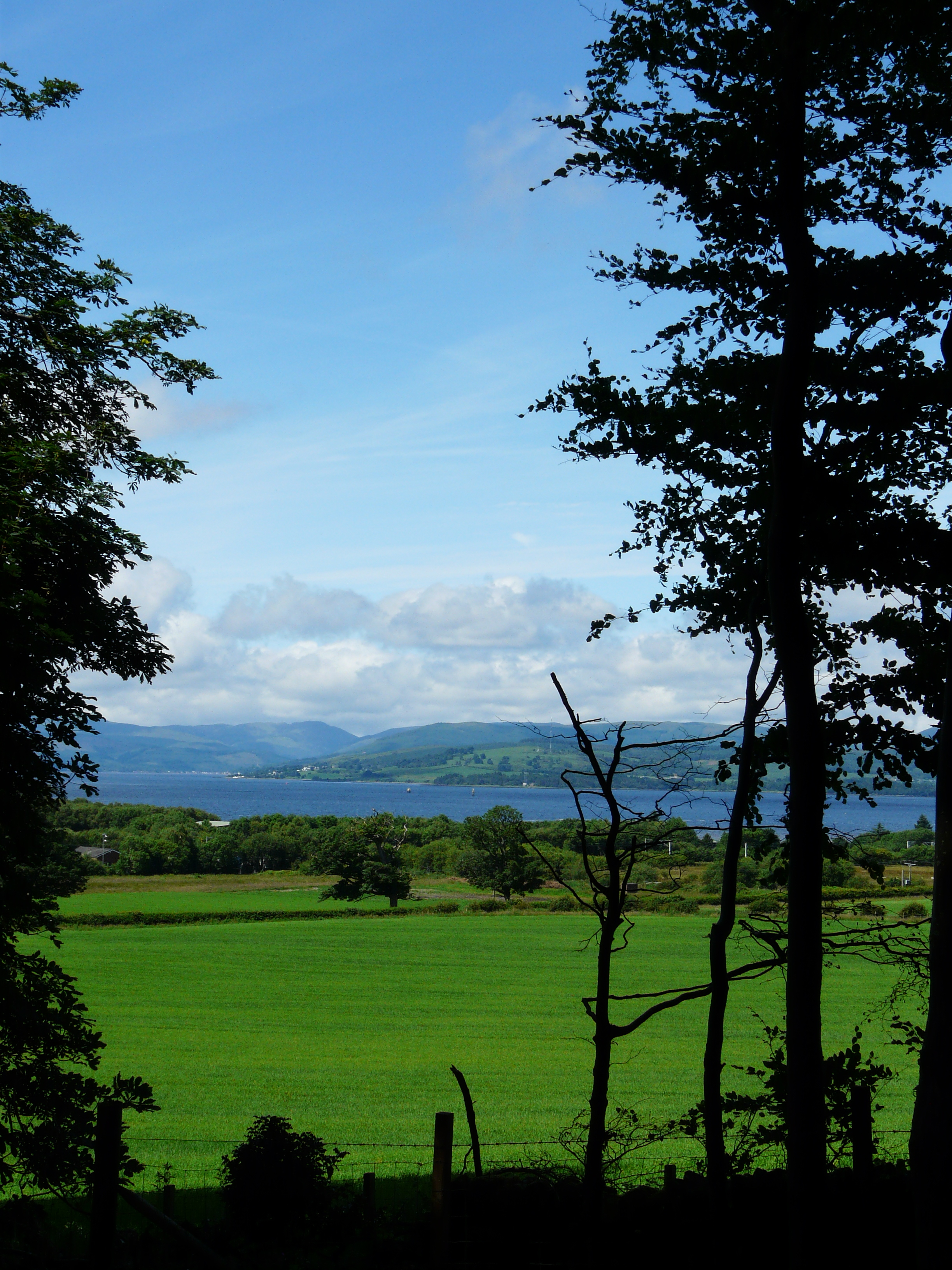 View from the trees at Keppoch House.