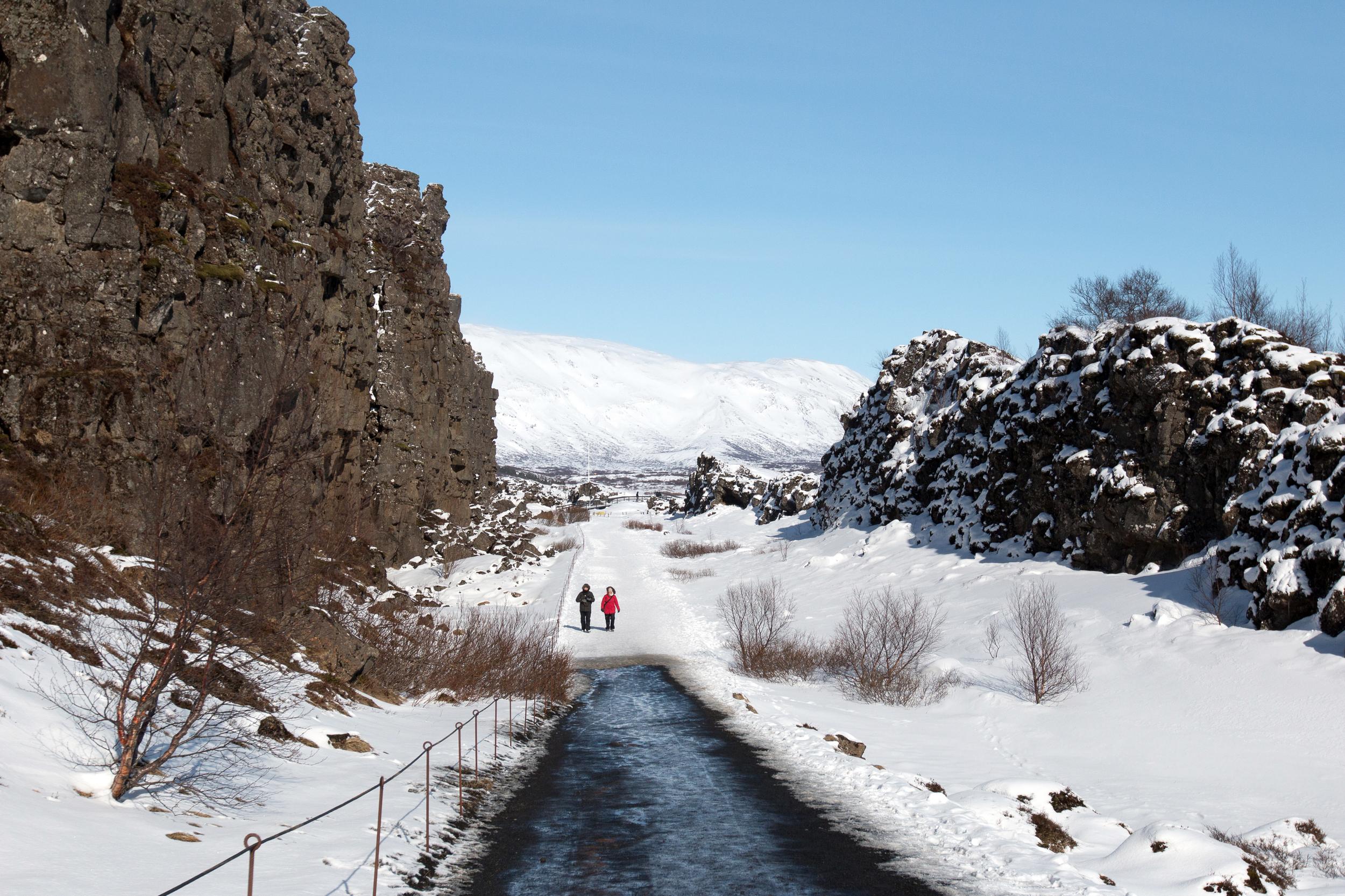 Walking between the American and Eurasian tectonic plates in Þingvellir National Park