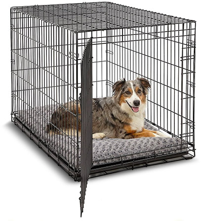 crate-accessories-beds.jpg