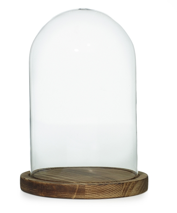 Cloche with wood slab