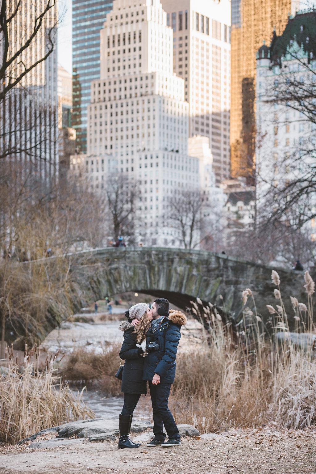 Farham&Atoosa Gapstow Bridge Proposal NYC (7).jpg