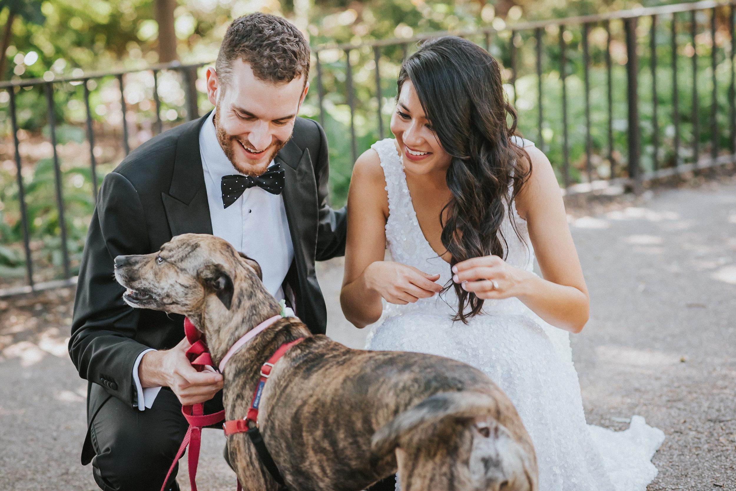 Dobbin Street Wedding.jpg