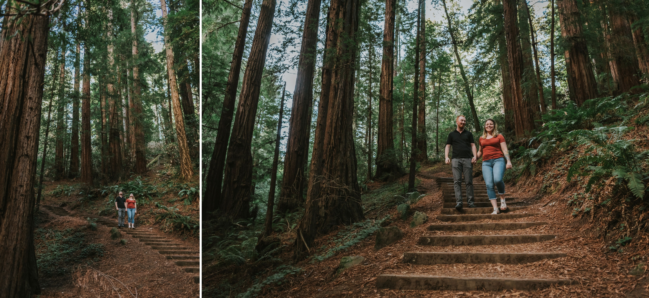 Hannah & Wesley - Muir Woods San Francisco Couples Session 07.jpg
