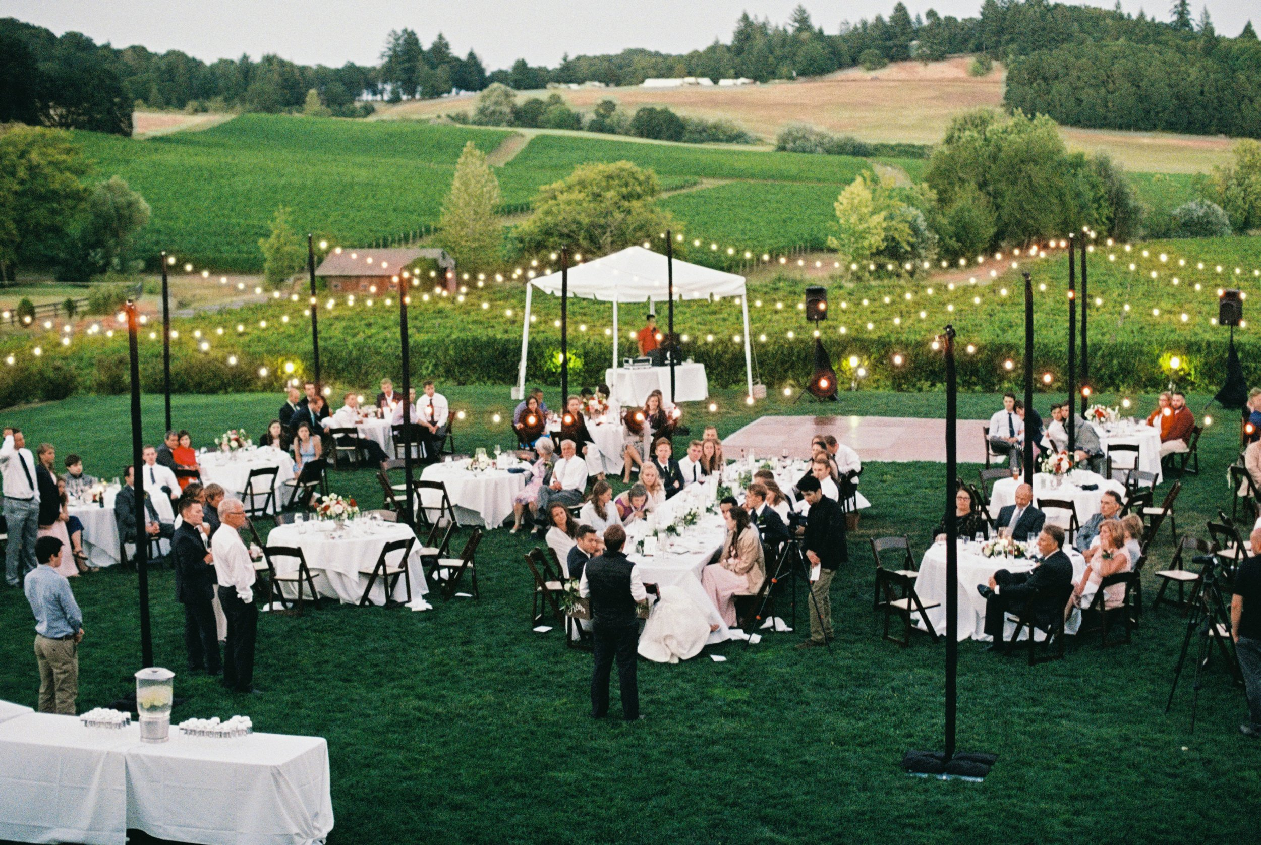 Alfresco Vineyard.jpg