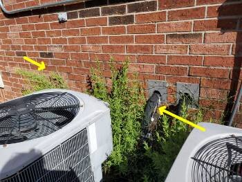 Keep the vegetation trimmed away from the condensing unit.
