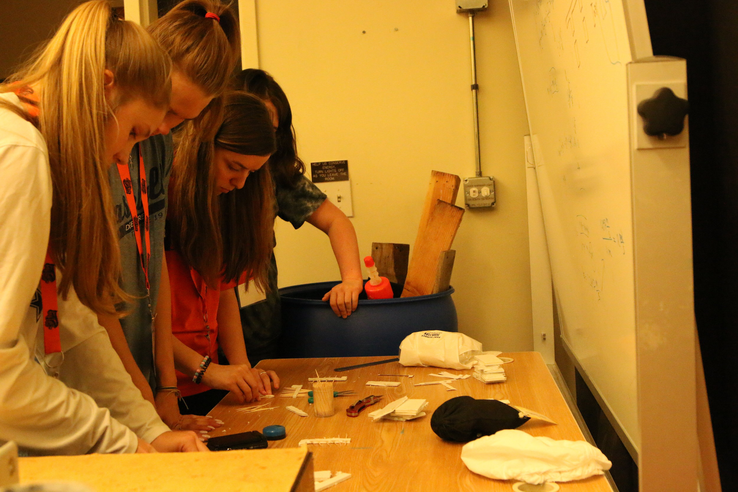 Students making model Thrips wings to study insect flight