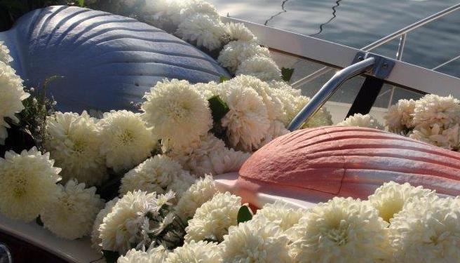 Shell-Urns-at-Memorial.png