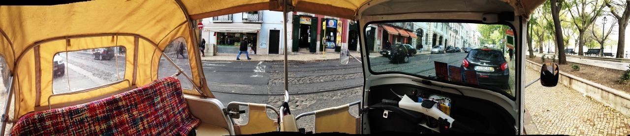 19-12-2014 12:42:37   Sao Pedro de Alcântara, Lisbon, Portugal