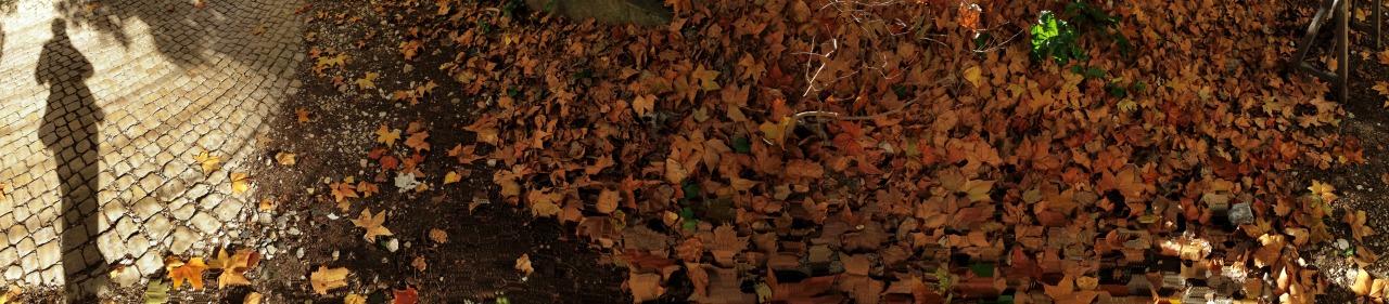 09-12-2014 10:52:55   Areeiro, Lisbon, Portugal