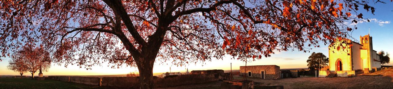 05-12-2014 16:52:39   Abrantes, Santarém, Portugal