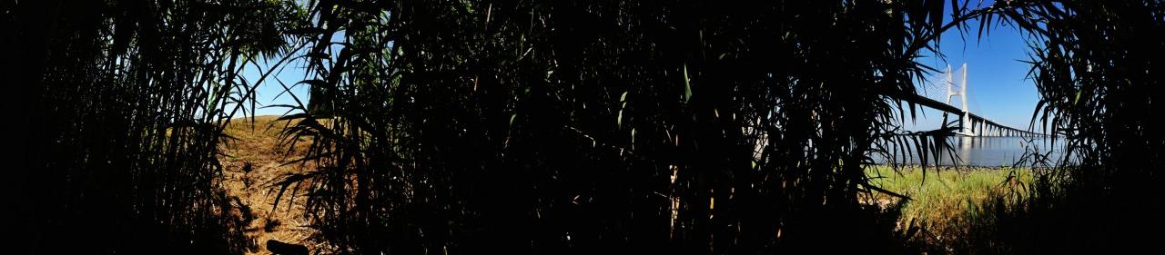 16-07-2014 16:29:54  Parque Tejo, Lisbon, Portugal
