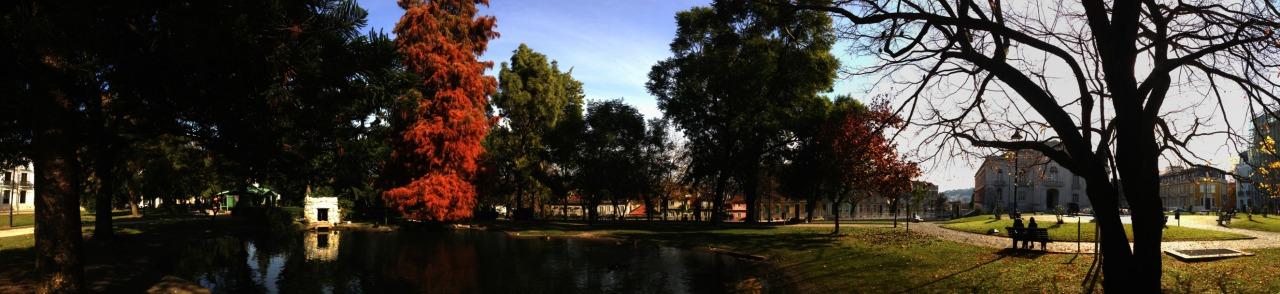 10-12-2013 12:04:24  Campo Mártires da Pátria, Lisbon, Portugal