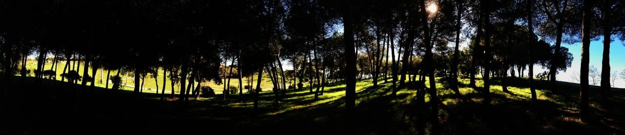 01-12-2013 12:07:02  Bela Vista, Lisbon, Portugal