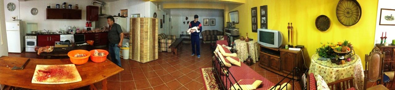 02-11-2013 12:02:27  Montemor-o-Novo, Alentejo, Portugal